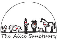Logo of the Alice Sanctuary