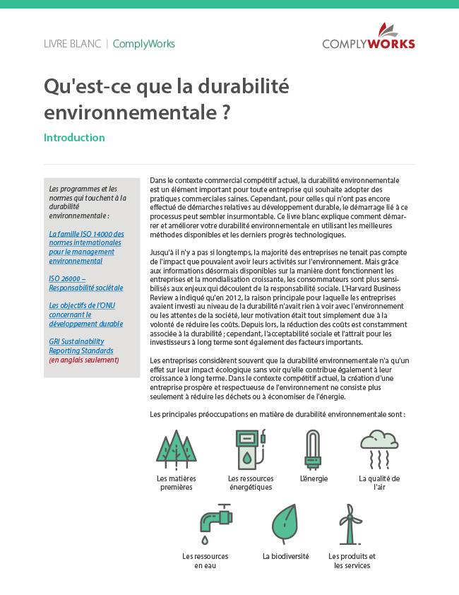 Qu'est-ce que la durabilité environnementale ?